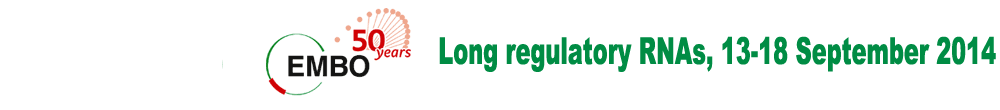 Long regulatory RNAs, 13-18 September 2014